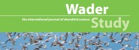 wader-study-cover-sample