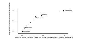 GOSS-CUSTARD Estimating mussel-feeder numbers_Fig1